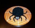 spider-cake
